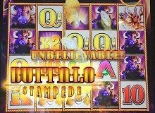 Buffalo Gold Slot Machine Online Instant Play For Free Right Now