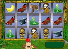Crazy Monkey Slot